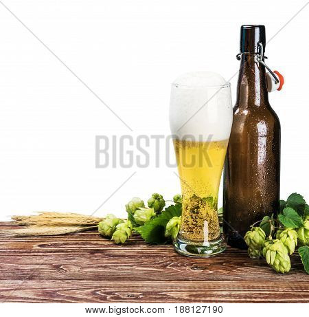 beer bottles and a branch of hops on a white background