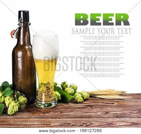 beer bottles and a branch of hops on a white background. Text delete