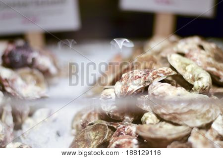 Oysters And Shellfish On Ice