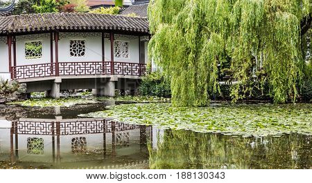 Weeping Willow and Japanese Bridge Reflected in Lake