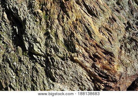 Background Of A Layered Metamorphic Rock
