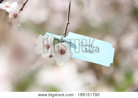 Spring sale. Hand-lettering on tag and Flowering tree.