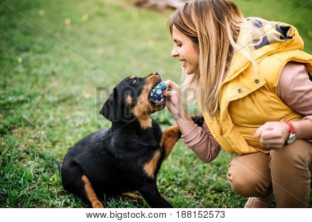 Girl Playing With Dog On Grass - Lifestyle Details Of Woman Playing With Rottweiler