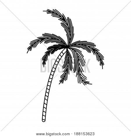 black silhouette with palm tree vector illustration