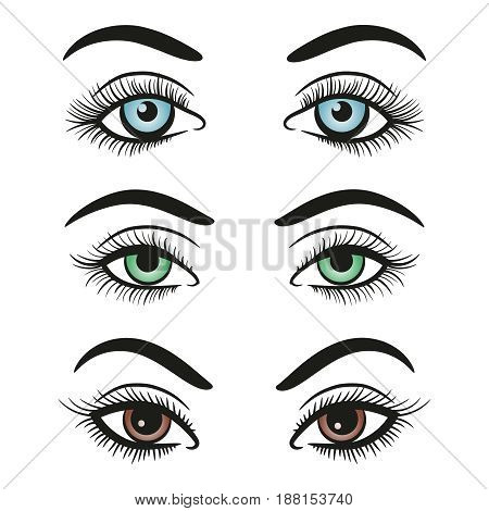 Basic colors female eyes and brows isolated on white background. Vector illustration