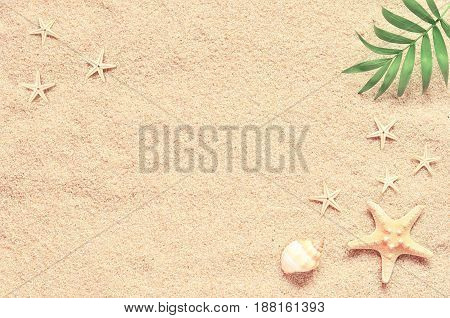 Sea sand with starfish and shells. Top view with copy space.