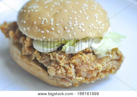 fried chicken burger dish , chicken burger
