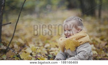 Little happy baby girl plays in autumn park among yellow leaves, telephoto