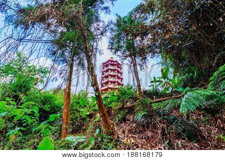 Ci'en pagoda architecture with nature and rain forest