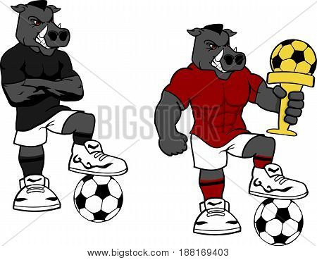 soccer futbol strong wild pig cartoon set in vector format very easy to edit