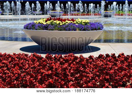 Contemporary style courtyard with plants, flowers, and water fountains taken in a modern garden