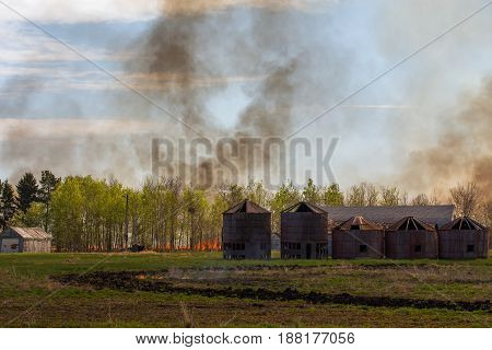 A wall of fire with billowing smoke coming toward a line of green leaf trees and old abandoned wood grain bins in a agricultural summer landscape