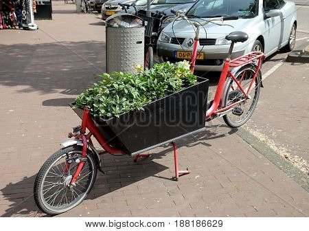 AMSTERDAM NETHERLANDS - MAY 14 2017: Bicycle with a trolley filled with flower seedlings