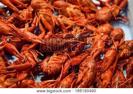 Bunch of steamed shrimps background food.