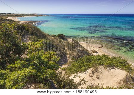 Titolo Summer beach.Torre Guaceto Nature Reserve: panoramic view of the coast from the dunes.Italy (Apulia). Mediterranean maquis: a nature sanctuary between the land and the sea.