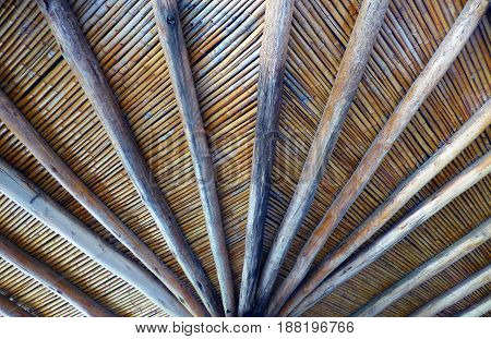 Bamboo roof. Roof made with bamboo reeds and wood trunks