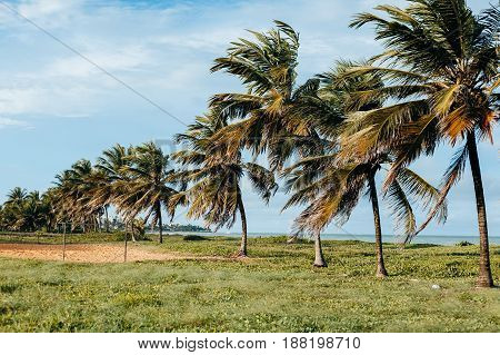 Intermares Beach Is A Brazilian Beach Located In Cabedelo (near Joao Pessoa). Area Of Environmental
