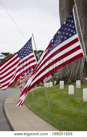 San Francisco National Cemetary Memorial Day Flags.
