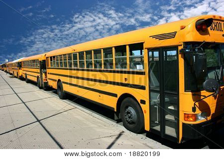 School buses waiting for students