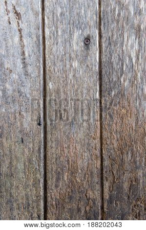 texture dirty old wood background grunge style
