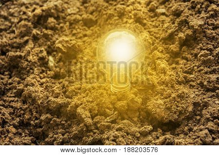 light bulb on the ground for solar energy on nature background