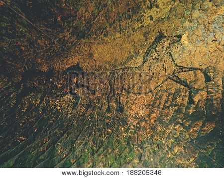 Black Carbon Horses On Sandstone Wall. Paint Of Hunting,  Prehistoric Picture