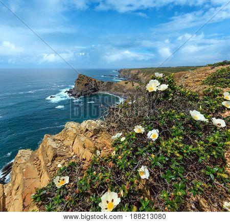 Summer Atlantic Ocean Rocky Coastline (algarve, Portugal).