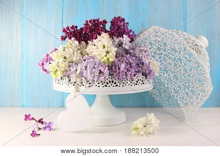 colorful lilacs in a white vase on a blue background with heart