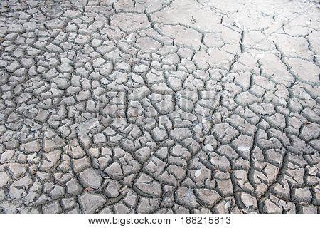 Drought crack ground close up background crack soil area.