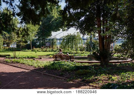 DUESSELDORF, GERMANY - AUGUST 17, 2016: Little Rhein Garden is s lovely small park and invites for relaxing at the river Rhein