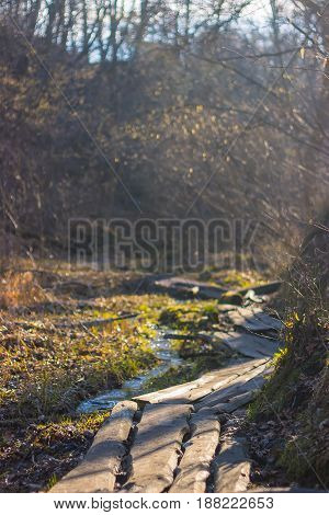 Wet muddy country pathway, swamp rural path