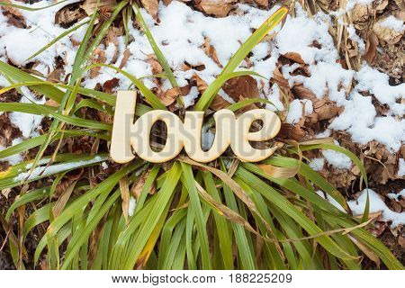 Wooden love sign outdoor. Spring concept. Felings concept. Top view