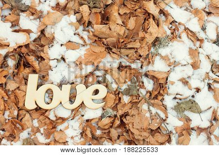 Wooden love sign on the ground with dry yellow leaves and snow. Autumn concept. Top view