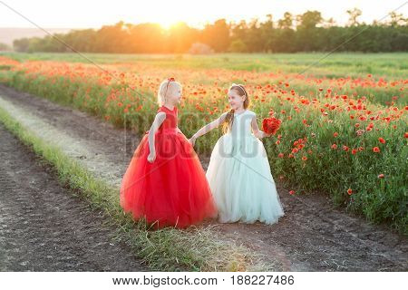 childhood, friendship, nature, holidays, freedom, wedding concept - two charming girls in feast dresses standing in the field of poppies, looking at each other and laughing