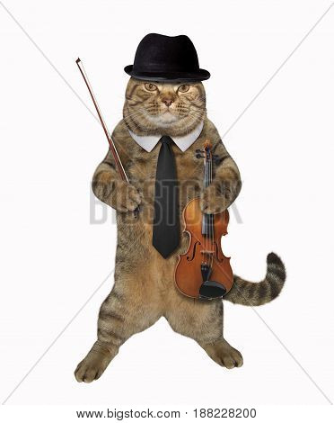 The cat dandy is holding a bow and a violin. White background.