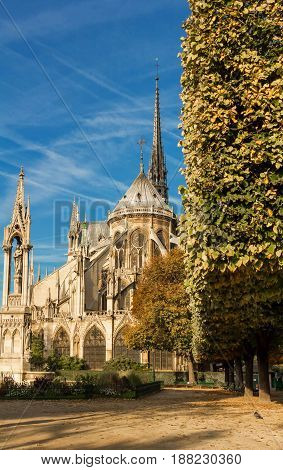 The view on beautiful Notre Dame Cathedral with garden , Paris, France.