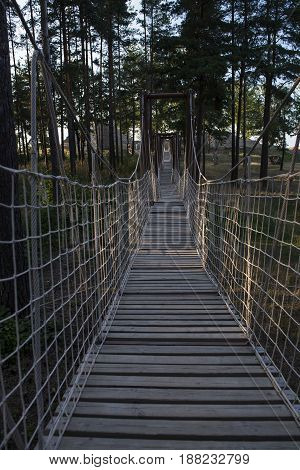 wooden rope bridge in the forest vertical