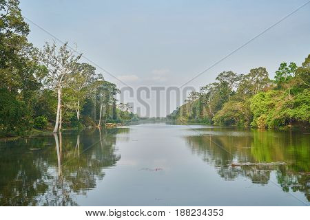 River Side with Green Trees in Cambodia
