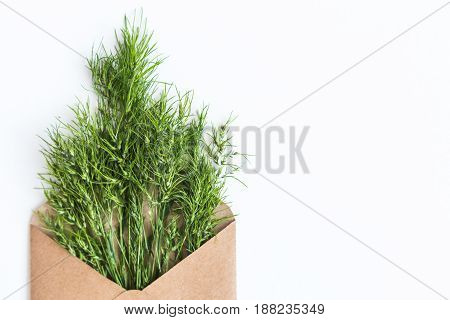 opened craft paper envelope filled with green cereal ears of grass. concept of healthy lifestyle. offer of organic natural food. care of the environment. Empty space for the text. flat lay.