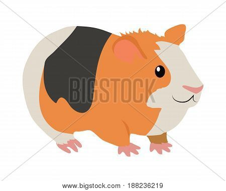 Cute guinea pig cartoon character icon isolated on white. South America fauna wild animal. Vector illustration of funny orange guinea pig with black and white stripes for zoo ad, nature concept