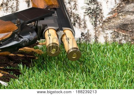 Cartridges fall from the hunting rifle to the grass