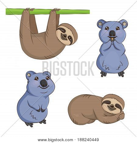 A set of cute cartoon smiling lazy sloth australian quokka animal characters in different positions. Sloth on the tree sleeping eating and smiling quokka.