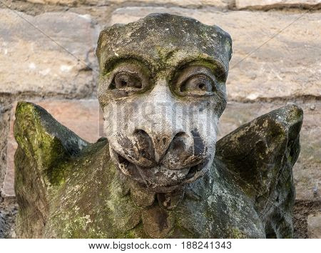 medieval gargoyle grotesque face on stone church wall