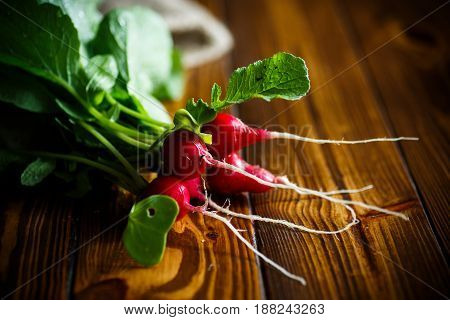 Bunch red ripe radish on a wooden table