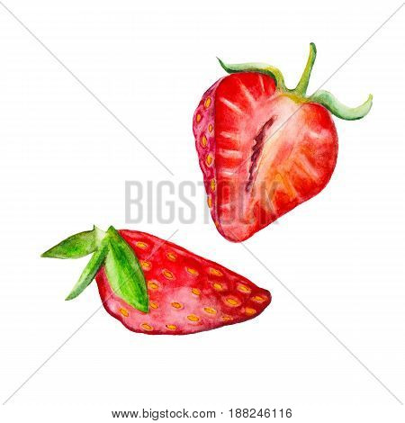 Strawberries isolated on white background watercolor illustration in hand-drawn style.