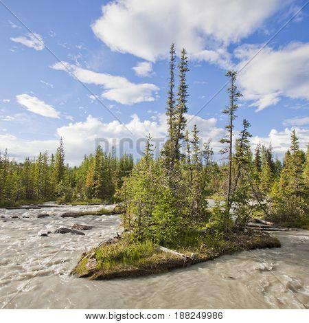 Mountain River. Altai. Russia