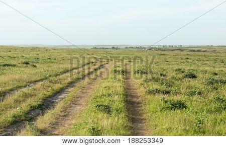 A road in a field . A photo