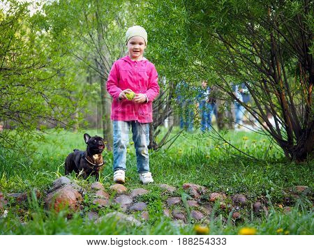A little girl with a dog in the Park. A child plays with a ball