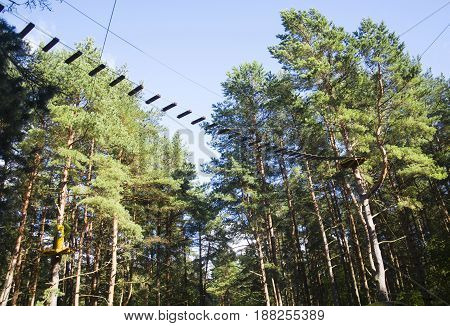 Rope adventure park in a summer forest scenic blue sky scenery. Overcoming obstacles and reaching heights abstract concept.
