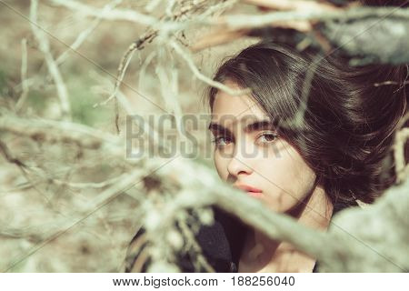 Girl Hiding In Leafless Tree Branches